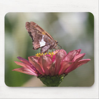 Silver-spotted Skipper Mouse Pad