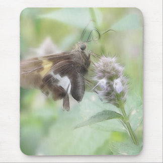 Silver-Spotted Skipper On Agastache Mouse Pad