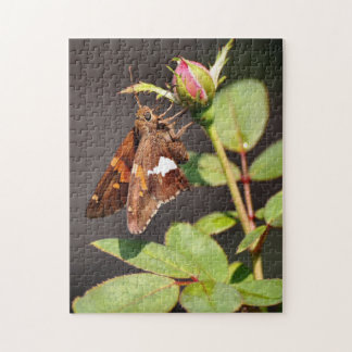 'Silver Spotted Skipper' Puzzle