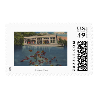Silver Springs, Florida - View of Riverboat & Postage