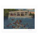 Silver Springs, Florida - View of Riverboat & Postcard