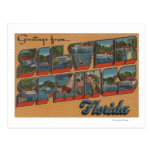 Silver Springs, la Florida - escenas grandes de la Tarjetas Postales