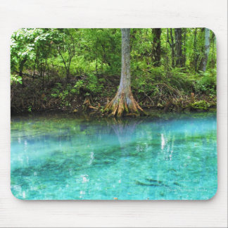 Silver Springs Mousepad