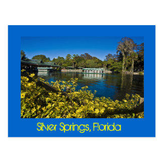 Silver Springs Nature Theme Park, Florida, U.S.A. Postcard