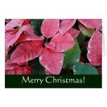 Silver Star Marble Poinsettias Christmas Card