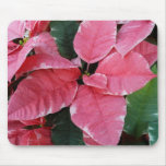Silver Star Marble Poinsettias Pink Holiday Floral Mouse Pad