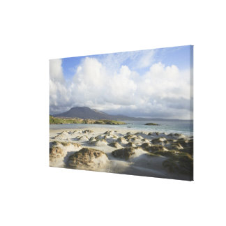 Silver Strand Beach Gallery Wrapped Canvas