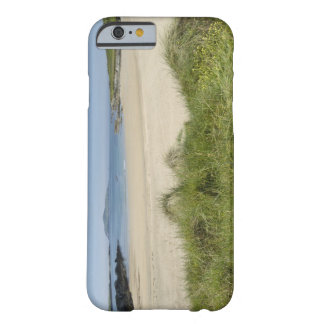 Silver Strand with Clear Island in the Barely There iPhone 6 Case