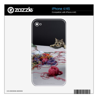 Silver tabby cat climbing over edge of table decals for the iPhone 4S