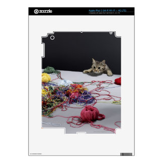 Silver tabby cat climbing over edge of table skins for iPad 3