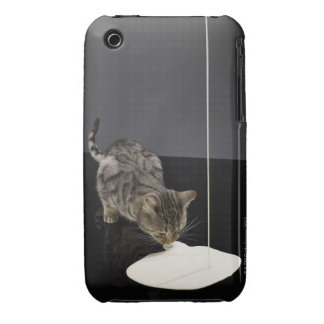 Silver tabby cat drinking cream from floor iPhone 3 case
