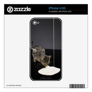 Silver tabby cat drinking cream from floor iPhone 4S skin