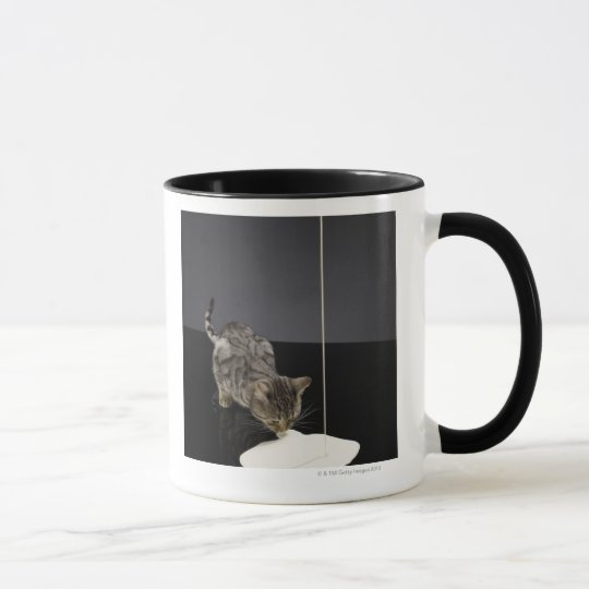 Silver tabby cat drinking cream from floor mug