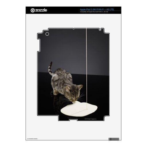 Silver tabby cat drinking cream from floor skins for iPad 3