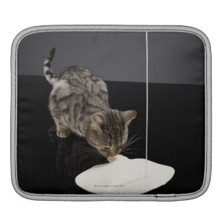 Silver tabby cat drinking cream from floor sleeve for iPads