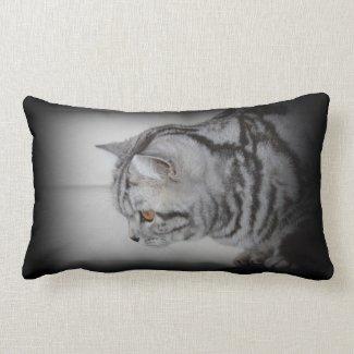 Silver tabby cat pillow
