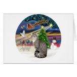 Silver Tabby - Christmas Magic Greeting Cards