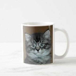 Silver Tabby Kitten Mug
