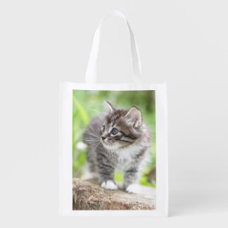 Silver Tabby Kitten with White Paws Reusable Grocery Bag