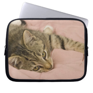 Silver tabby stretched out on bedspread laptop sleeve