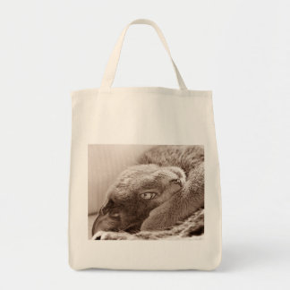 Silver the Cat Grocery Tote Grocery Tote Bag