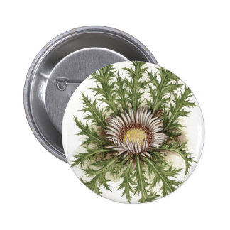 Silver Thistle Collection Pinback Button