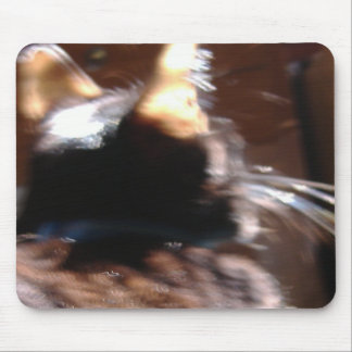 Silver Whiskers Mouse Pad