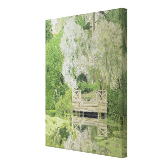 Silver White Willow 1904 Canvas Prints