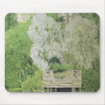 Silver White Willow, 1904 Mouse Pad