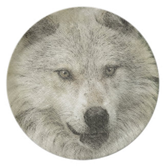 Silver Wolf Pencil Illustration Drawing Melamine Plate