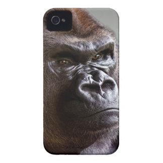 Silverback del gorila Boss iPhone 4 Case-Mate Cárcasa
