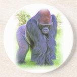 Silverback Gorilla in Oil Beverage Coaster