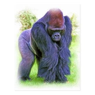Silverback Gorilla in Oil Post Card