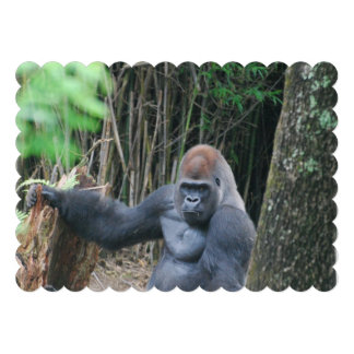 Silverback Gorilla Invitation