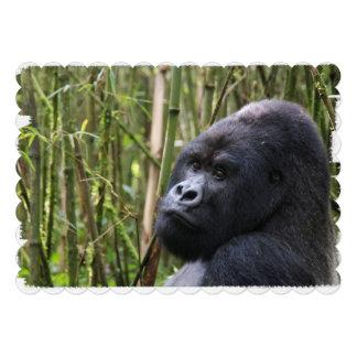 Silverback Gorilla Custom Invitations