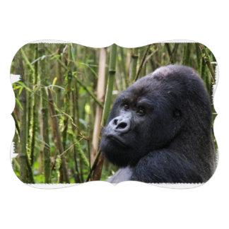 Silverback Gorilla Personalized Announcements