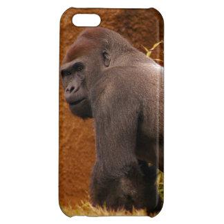 Silverback Gorilla iPhone 5C Cover