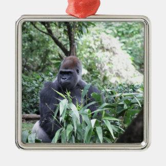 silverback gorilla square metal christmas ornament
