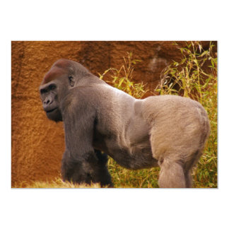 Silverback Gorilla Photo Invitation