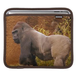 Silverback Gorilla Photo  iPad Sleeve
