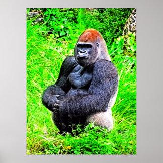 Silverback Gorilla Photo Painting Poster