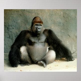 Silverback Gorilla Print