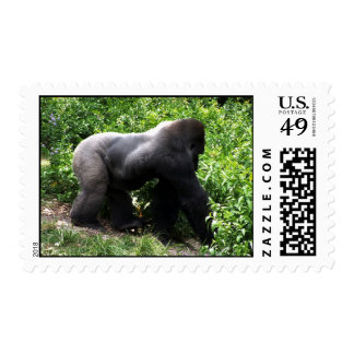 Silverback Gorilla walking sideway Postage Stamps