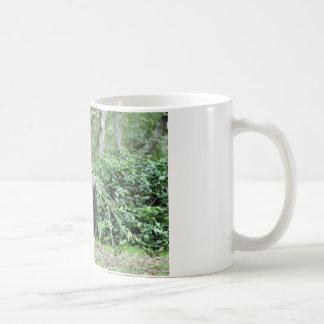 silverback gorillas classic white coffee mug