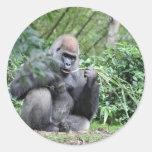 silverback gorillas round stickers