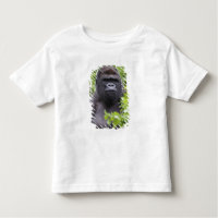 Toddler Tops & T-Shirts            <
