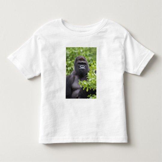 Silverback Lowland Gorilla, Gorilla gorilla, Toddler T-shirt