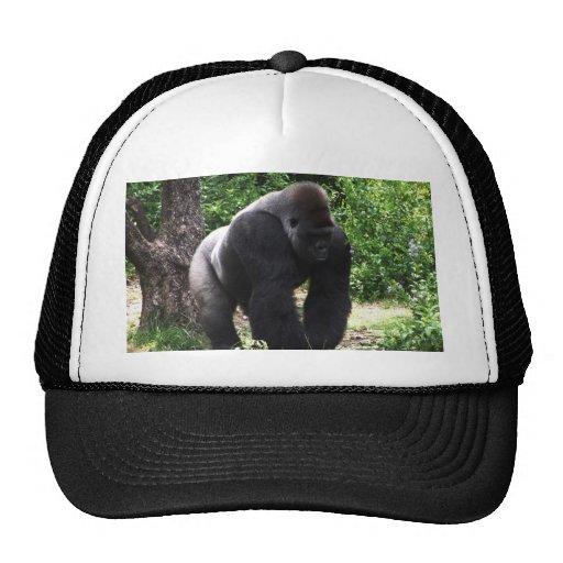 Silverback Male Gorilla walking head down.jpg Mesh Hat