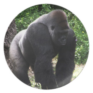 Silverback Male Gorilla walking head down.jpg Party Plate
