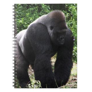 Silverback Male Gorilla walking head down.jpg Spiral Notebook